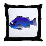 Blue Rockfish (Blue Perch) Scorpionfish fish Throw