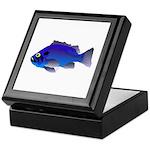 Blue Rockfish (Blue Perch) Scorpionfish fish Keeps