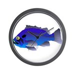 Blue Rockfish (Blue Perch) Scorpionfish fish Wall