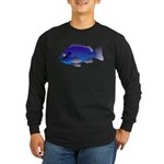 Blue Rockfish (Blue Perch) Scorpionfish fish Long