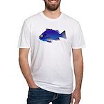 Blue Rockfish (Blue Perch) Scorpionfish fish Fitte