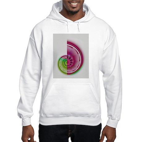 CHAMBERED NAUTILUS Hooded Sweatshirt