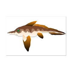 Ratfish (Lilys Deep Sea Creatures) Posters