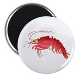Deep Sea Red Shrimp Magnet