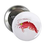 Deep Sea Red Shrimp 2.25