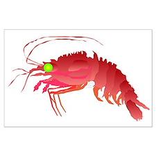 Deep Sea Red Shrimp Large Poster