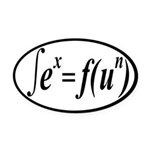 Integral Calculus Is Fun and Sexy Oval Car Magnet