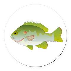 Redear Sunfish fish Round Car Magnet