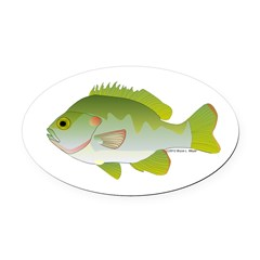 Redear Sunfish fish Oval Car Magnet