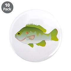 Redear Sunfish fish 3.5