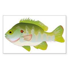 Redear Sunfish fish Sticker (Rectangle 50 pk)