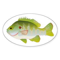 Redear Sunfish fish Sticker (Oval 50 pk)