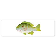 Redear Sunfish fish Sticker (Bumper 50 pk)