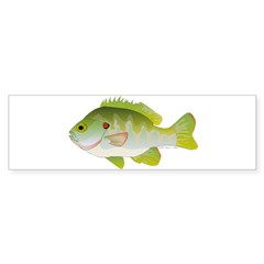 Redear Sunfish fish Sticker (Bumper 10 pk)
