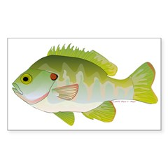Redear Sunfish fish Sticker (Rectangle)