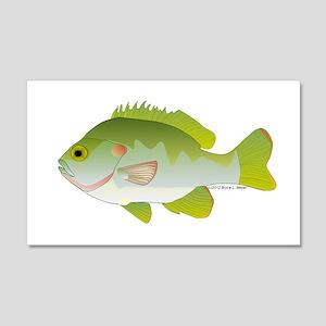 Redear Sunfish fish 20x12 Wall Decal
