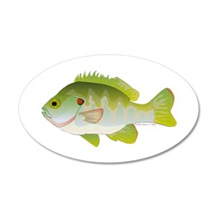 Redear Sunfish fish Wall Decal