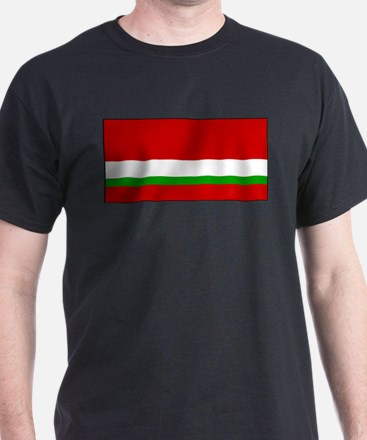 Tajikistan - National Flag - 1991-1992 T-Shirt
