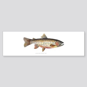 Colorado River Cutthroat Trout Sticker (Bumper)