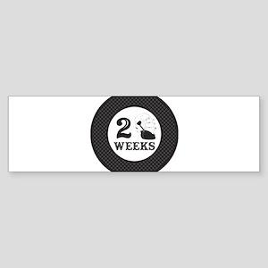 Pirate 2 Weeks Milestone Sticker (Bumper)
