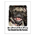 PUGS ARE REALLY ALIENS Small Poster
