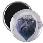 PUGS ARE REALLY ALIENS Magnet