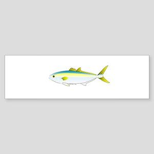 California Yellowtail fish Sticker (Bumper 10 pk)