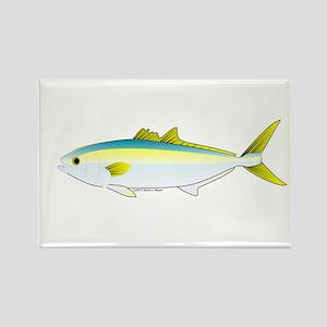 A Yellowtail Fish Magnets - CafePress
