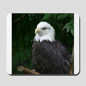 eagle Mousepad