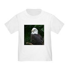 eagle T