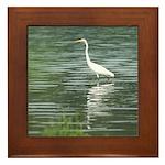 Great Egret Wading Framed Tile