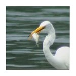 Great Egret with Fish Tile Coaster