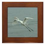 Great Egret Flying Framed Tile