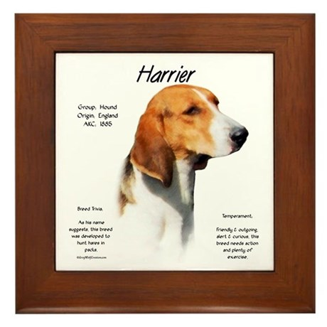 Harrier Framed Tile
