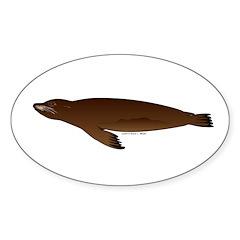 California Sea Lion Sticker (Oval 50 pk)