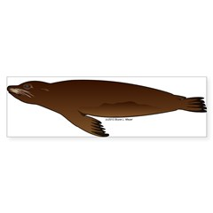 California Sea Lion Sticker (Bumper 10 pk)