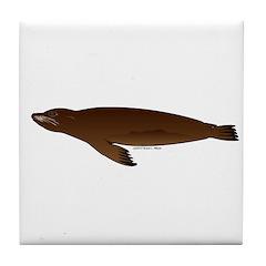 California Sea Lion Tile Coaster
