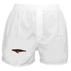 California Sea Lion Boxer Shorts