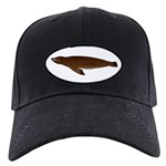 California Sea Lion Black Cap