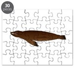 California Sea Lion Puzzle