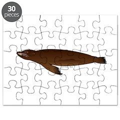 California Sea Lion Puzzle