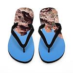 Red Rocks Flip Flops