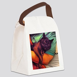 Burmese in arms Canvas Lunch Bag