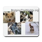 BridgingTheWorlds.org Mousepad