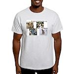 BridgingTheWorlds.org Ash Grey T-Shirt