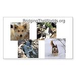BridgingTheWorlds.org Rectangle Sticker