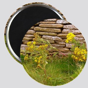 Orkney Wall Magnet