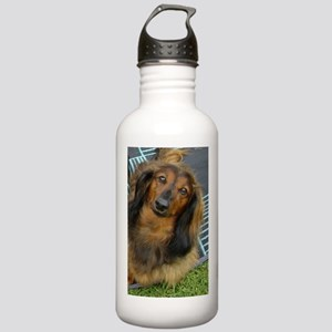 Dachshund Long Haired Stainless Water Bottle 1.0L