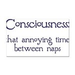 Consciousness-Naps Rectangle Car Magnet