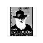 Viva Old Man Darwin Square Sticker 3
